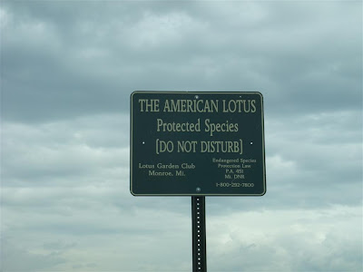the american lotus, protected species, do not disturb, lotus garden club sign, michigan