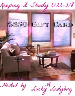 blue living room shades $250 Cellular Window Shades GC #Giveaway