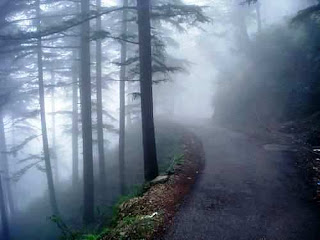 Dalhousie (Best Honeymoon Destinations In India) 7