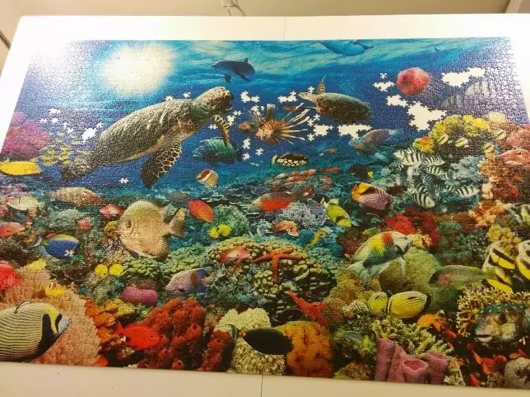 Ravensburger Under the Sea 5000 piece jigsaw puzzle