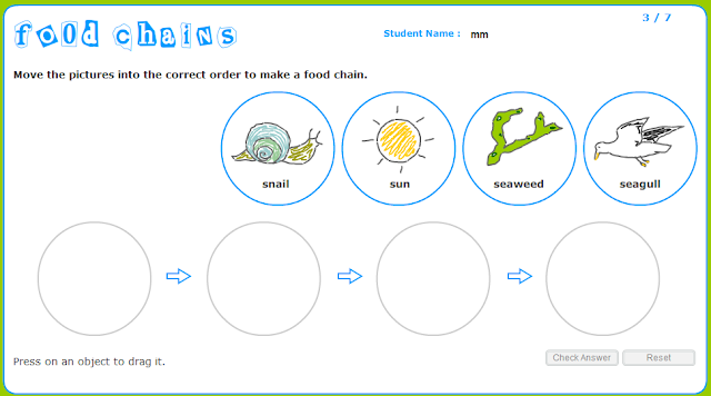 100+ [ Food Chain Worksheets ] | Ocean Food Chain Worksheet ...