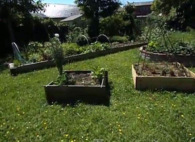 Ecolo bio nature permaculture urbaine et jardinage bio for Jardin permaculture 2015