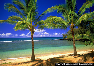 beaches wallpapers for desktop hd