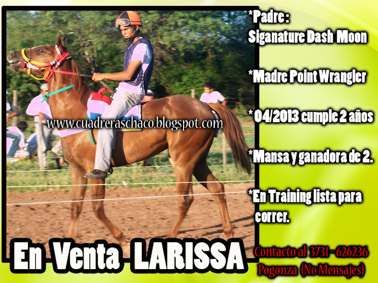 LARISA EN VENTA