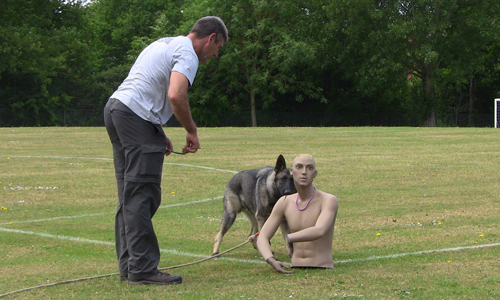Dog and trainer with top half of manniquin in the middle of a field