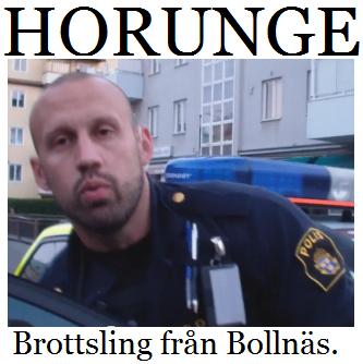 polisen bollnäs