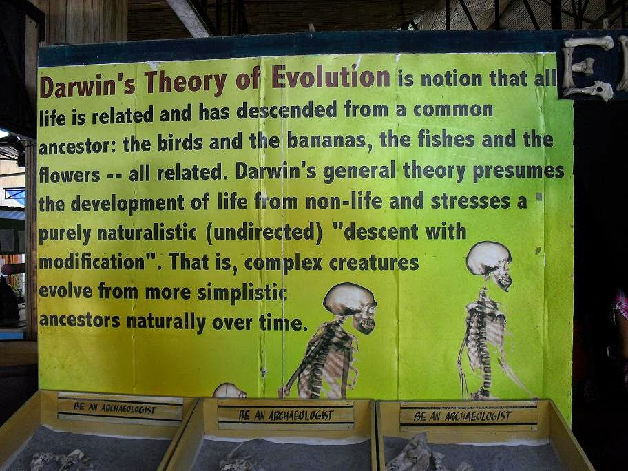 an analysis of darwins theory of evolution In 1859, charles darwin's seminal book on the origin of species by means of natural selection was published and presented the groundbreaking idea that all species.
