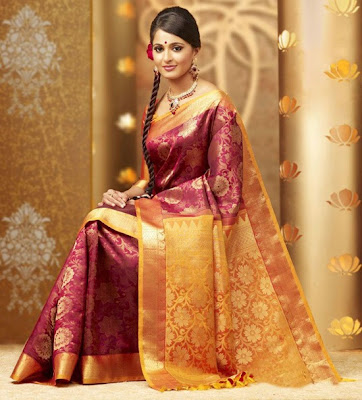 Anushka in Silk Sari stills