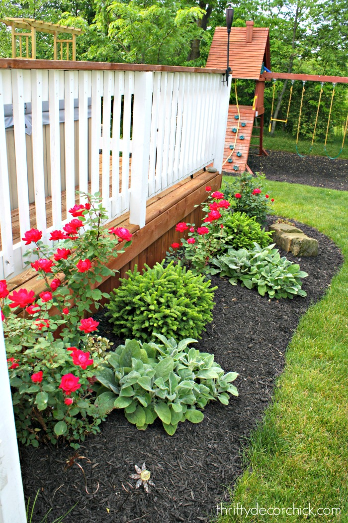 The ugly side from thrifty decor chick for Best bushes for flower beds