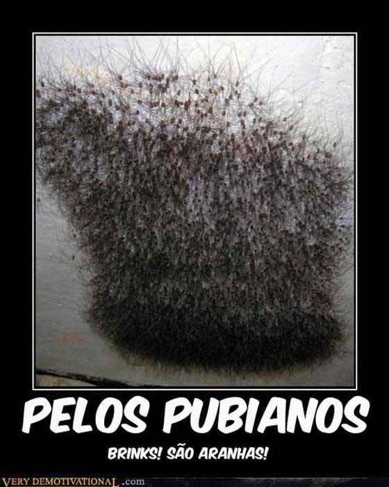 Maximum trolling memes pelos pubianos - Maquina para rasurar vello pubico ...