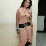 Bhanu Sri Hot Photos at Veedi Pourusham Movie Press Meet 4