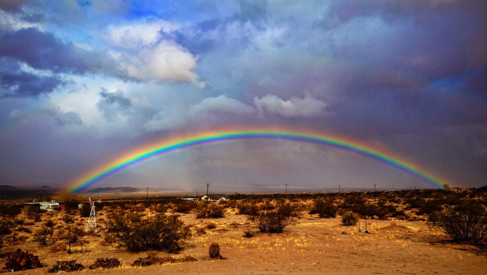 spare parts and pics desert rainbow