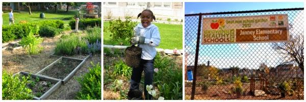 School Garden Collage
