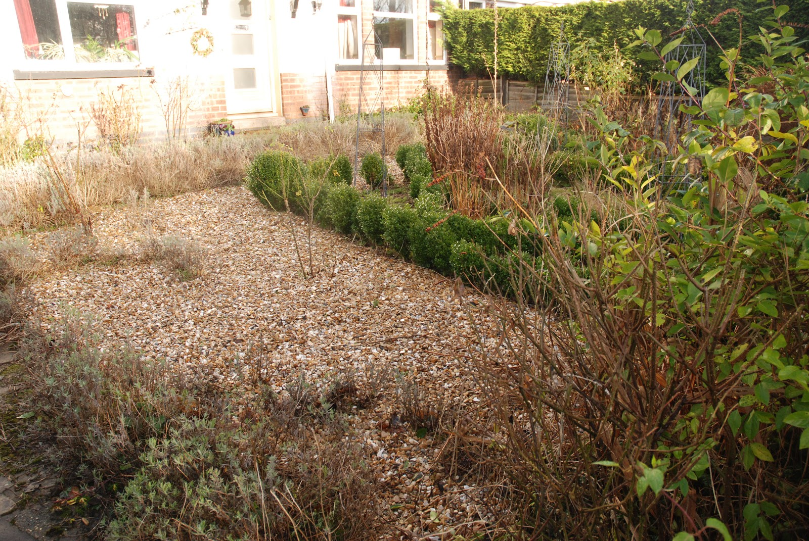 the blackberry garden: End of Month Review - December 2012