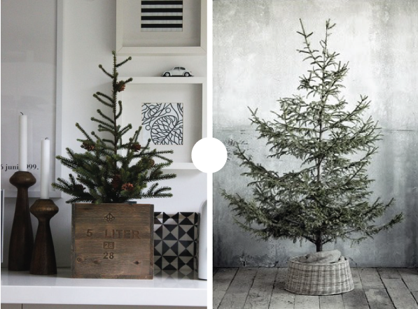 The Plumed Nest Pins Of The Week Potted Christmas Tree