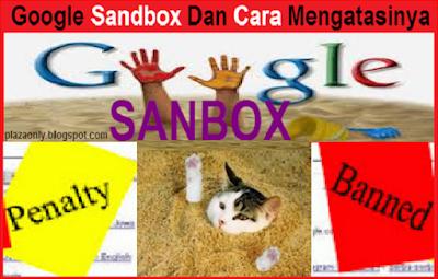 Google Sandbox Dan Cara Mengatasinya