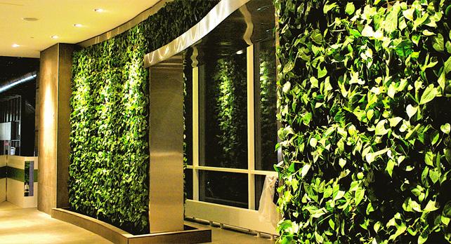 Muros verdes verticales ecologicos marbella trade s a s for Muros verdes verticales