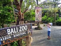 kebun binatang bali/ bali zoo