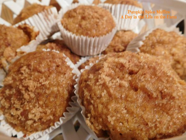 Day in the Life on the Farm: Pumpkin Spice Muffins from SRC for # ...