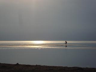 Delta de L'Ebre late afternoon fisherman