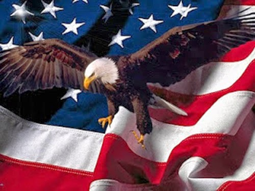 Eagle American Flag Image