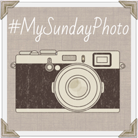 http://onedad3girls.com/blog/mysundayphoto-a-new-look