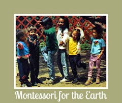Montessori for the Earth