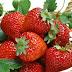 Manfaat Kandungan Strawberry Bagi Kesehatan