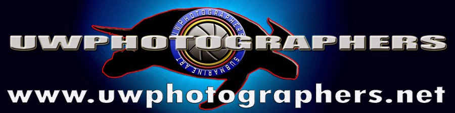 www.uwphotographers.net