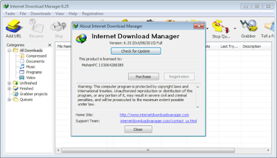 IDM 6.28  build 8 portable