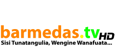 Barmedas IT and Media Group
