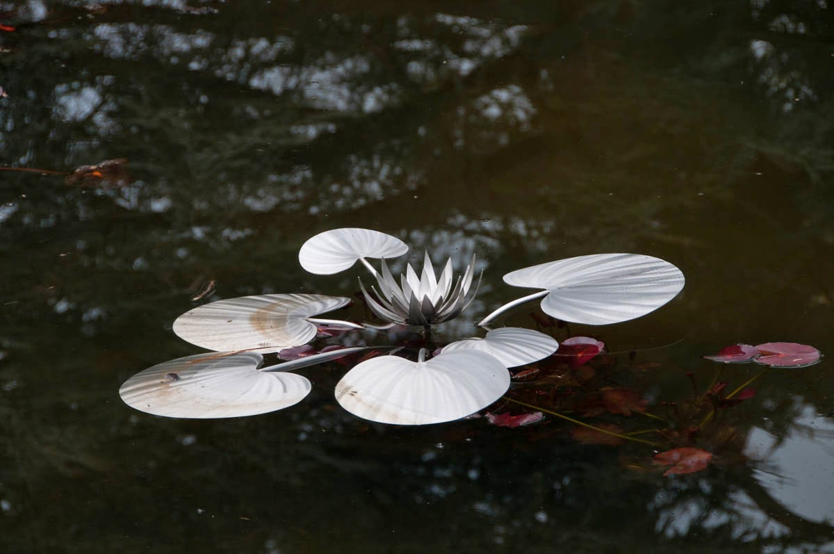 Stainless steel sculpture of water lilies by artist Ian Marlow