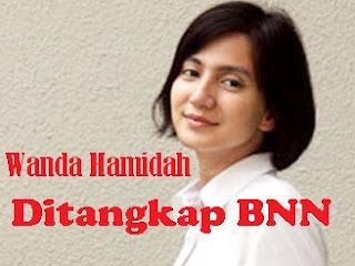 Kakak Wanda Hamidah Kecam Pers