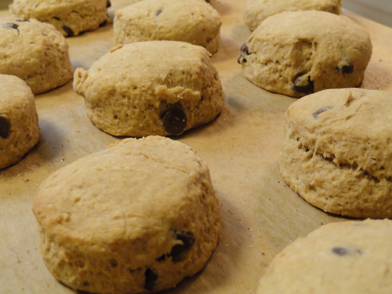 Food, Glorious Food!: Mocha Scones
