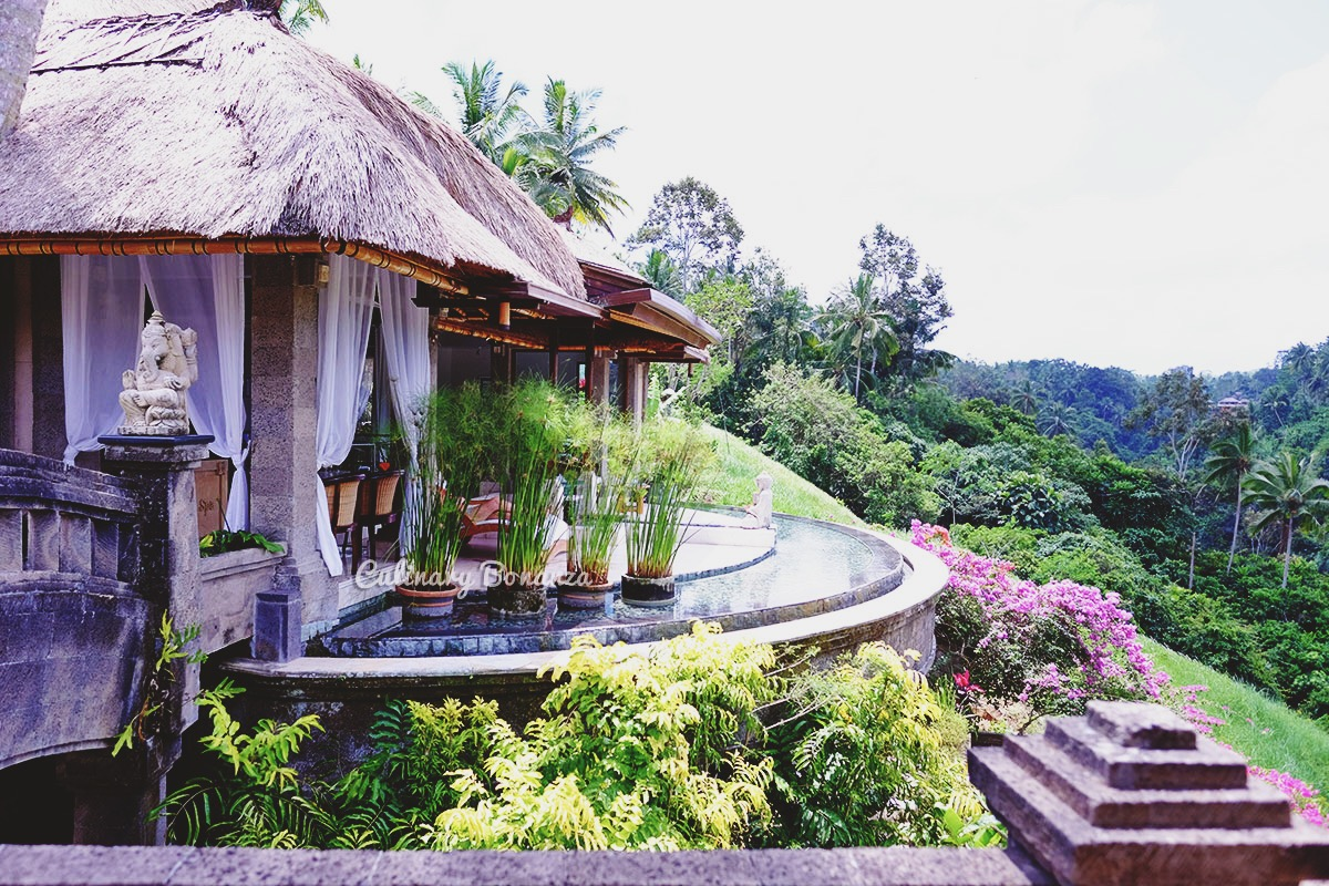 The Viceroy Bali, Ubud (www.culinarybonanza.com)