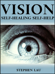 <b>Vision Self-Healing Self-Help</b> by Stephen Lau