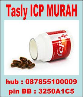 Tasly ICP murah