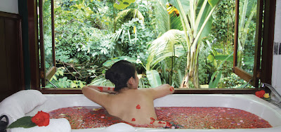 body treatment, spa in ubud, holiday in ubud