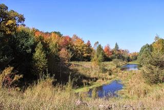 photo of Minnesota Autumn