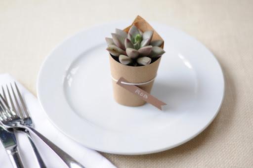 plantas de regalo a invitados
