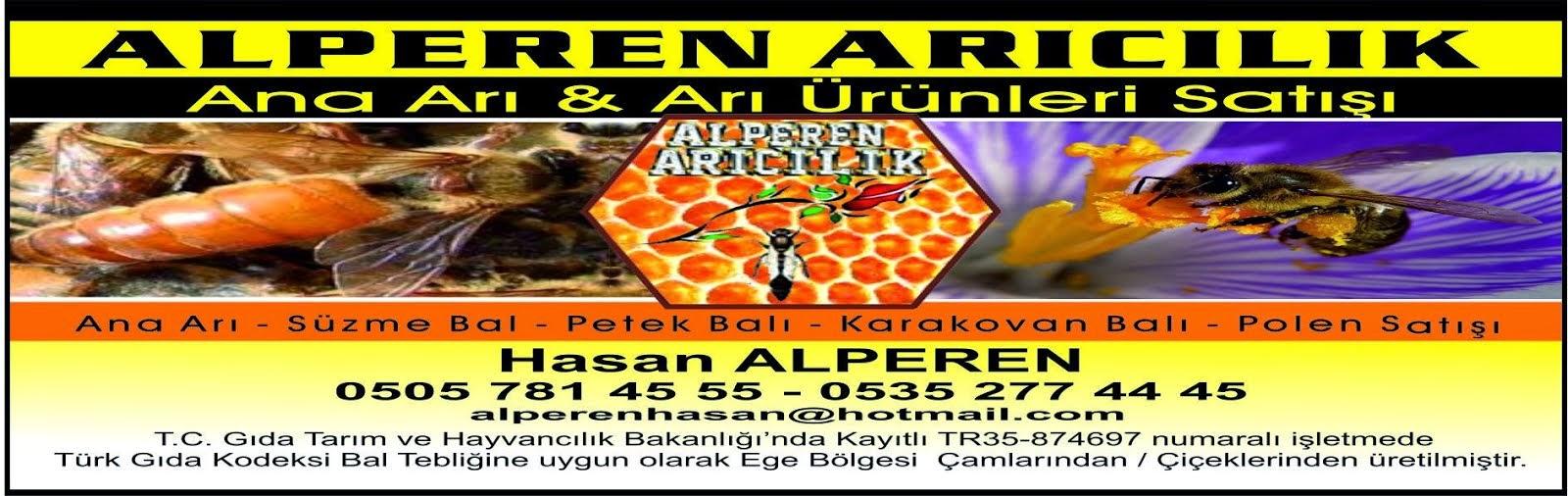 ALPEREN ARICILIK