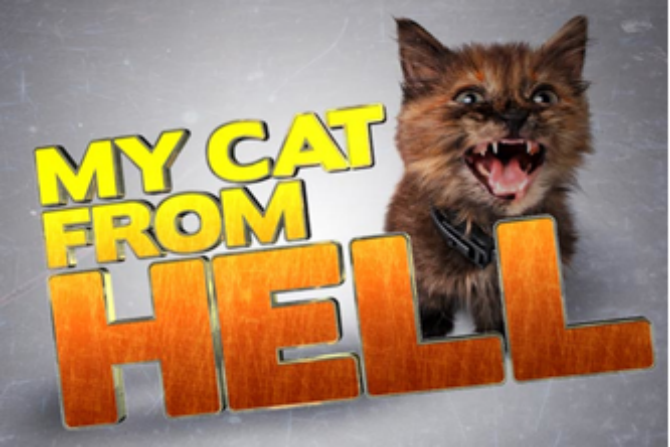 Austin Casting Call: My Cat From Hell