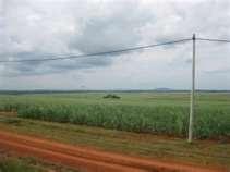 Ladang Tebu Chuping Perlis