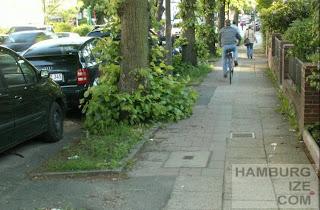 """Radweg"" Maria-Louisen-Straße"