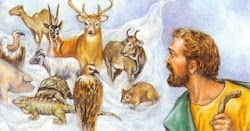 Почему христиане из язычников должны были воздерживаться от идоложертвенного и крови?