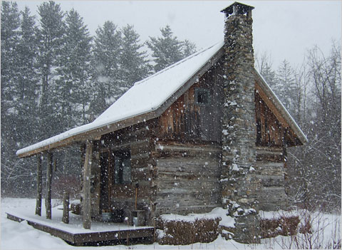 Attrayant It Must Be Some Kind Of Winter Cabin Fever. Dooley The Dog And I Have Been  Doing