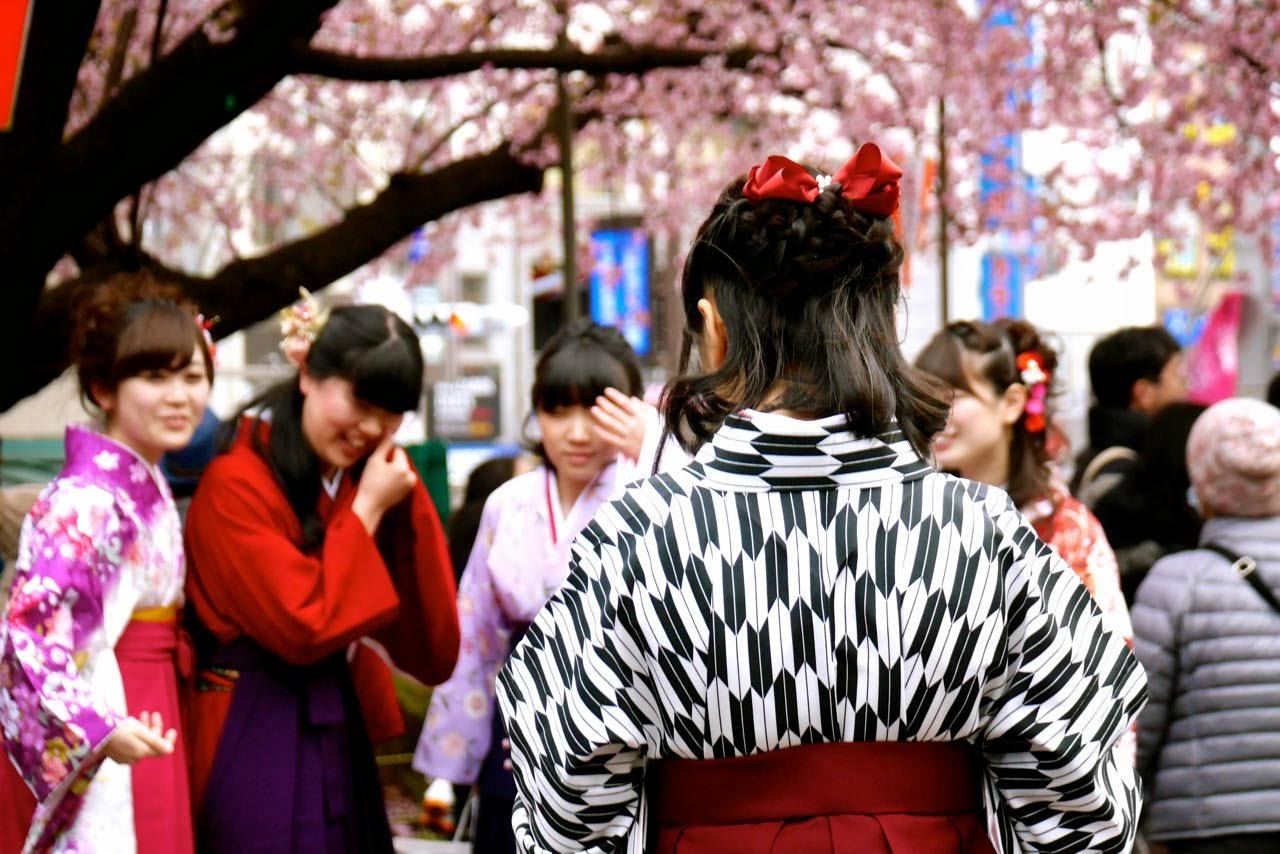 上野公園, 桜 , Ueno Park, Sakura, Cherry Blossoms