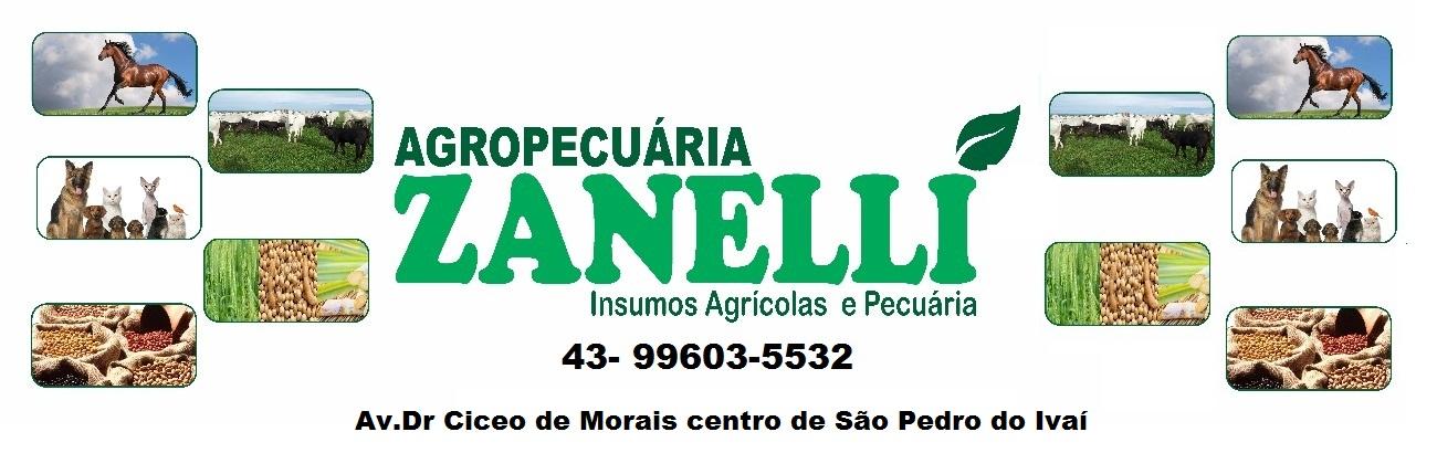 AGROPECUÁRIA ZANELLI EM SÃO PEDRO DO IVAÍ 29/5