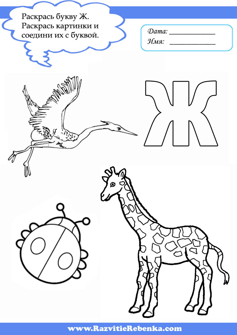картинки для детей на букву ж