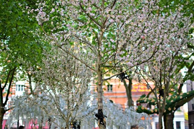 The Botanist Sloane Square Chelsea in Bloom 2015